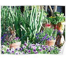 Potted Garden Poster