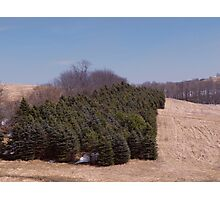 Early Spring Landscape Photographic Print