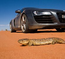 Audi in the outback by Overlander4WD