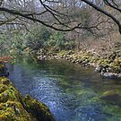 The River Duddon by Jamie  Green
