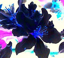 Inverted Blooms by Lisa Taylor