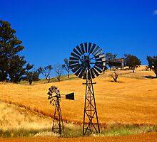 Wheat Farm by D-GaP