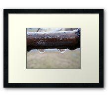 water fangs Framed Print