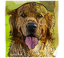Golden-Retriever-Justin-Beck-Picture-2015093 Poster
