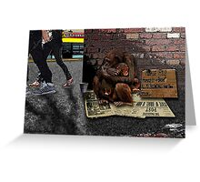Homeless-Chimps-Justin-Beck-Picture-2015083 Greeting Card