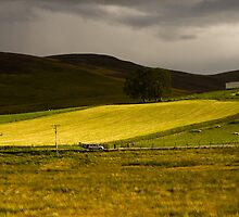 Corgarff Castle by Andrew Leitch