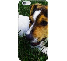 Jack Russell Justin Beck Picture 2015097 iPhone Case/Skin