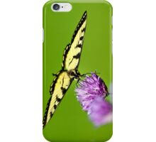 Balanced Butterfly iPhone Case/Skin