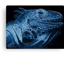 Lizard-Justin-Beck-Picture-2015080 Canvas Print