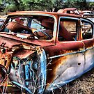 For Sale ...Cheap ~ BoneYard Series  by Carla Jensen
