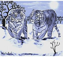 Snow Tigers Blue Justin Beck Picture 2015088 Photographic Print