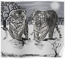 Snow Tigers Grey Justin Beck Picture 2015087 Poster