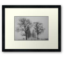 Foggy lane Framed Print