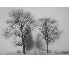 Foggy lane Photographic Print