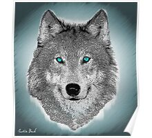 Wise Wolf Justin Beck Picture 2015089 Poster