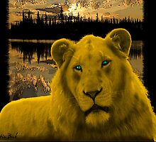 Yellow lion Justin Beck Picture 2015090 by Justin Beck