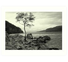 Tree with a View Art Print