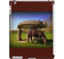 Spinster's Rock iPad Case/Skin