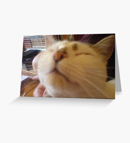 Mr Stampy Greeting Card
