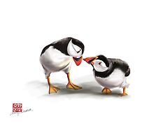 Puffin Love by Audrey Takeshta
