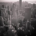 Empire State Building and South Manhattan by 64iso