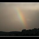 Rainbow by EvCohen