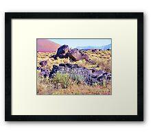 Rock Flowers Framed Print