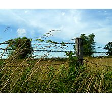 Country Feeling Photographic Print