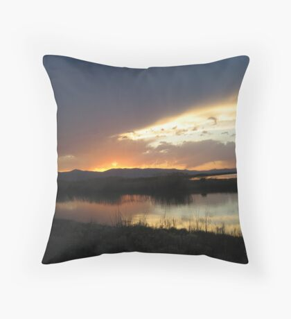 Beaver Ripples Throw Pillow