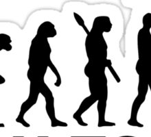 Evolution born to ski Sticker
