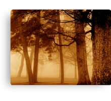 Fog and woods Canvas Print