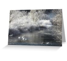 White and wistful Greeting Card