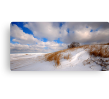 Winter Comes Softly Canvas Print