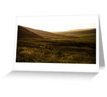 Golden Fields Greeting Card