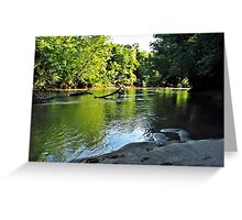 Down the Lazy River... Greeting Card