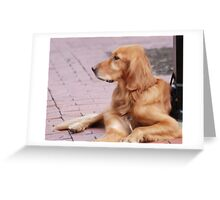 Patience is a virtue. . .  Greeting Card