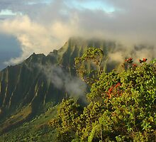 Clearing Storm, Napali Coast by Stephen Vecchiotti