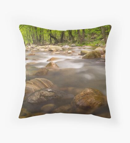 Misty Stream  Throw Pillow