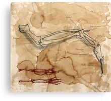 Arm Canvas Print