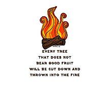 Matthew 7:19 Photographic Print