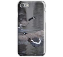 Canadian Geese in Flight iPhone Case/Skin