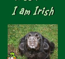 Kiss Me I am Irish by Jonice