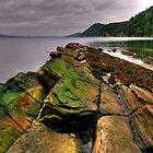 Mossy Point by Len Langevin