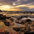 Tide Pools by Len Langevin