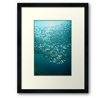 Its a group thing Framed Print