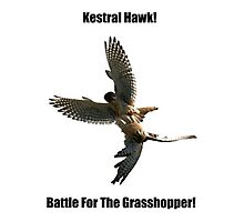 Kestrel Falcon Battle For The Grasshopper iPhone Case and Clothing by DARRIN ALDRIDGE