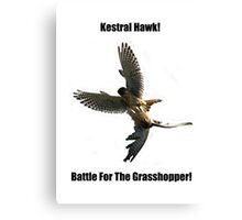 Kestrel Falcon Battle For The Grasshopper iPhone Case and Clothing Canvas Print