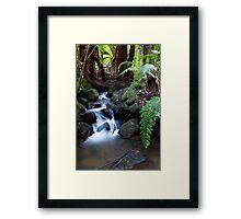Bakers Creek, Lucaston Framed Print