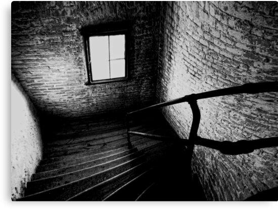Dark Descent by shutterbug2010