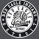 Grey Version of Red Eagle Indians Detroit ice hockey  by huliodoyle